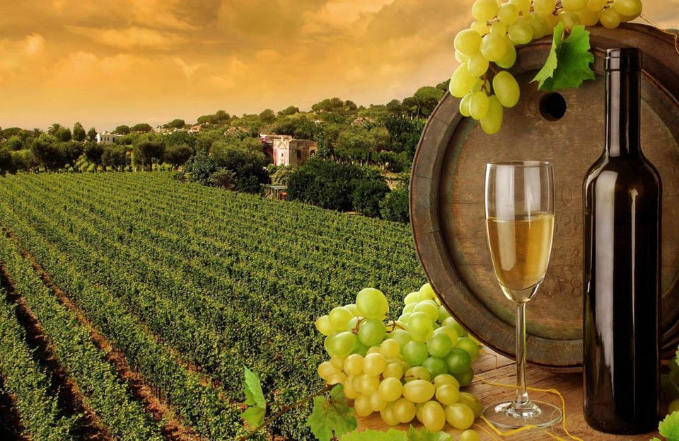 Подземный мир и винная долина
