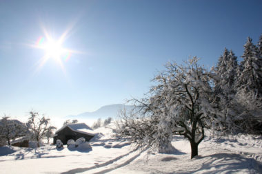 Словения зимой