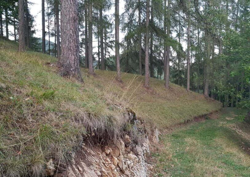 Лес, гора Подкум