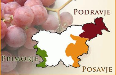 Вина Словении