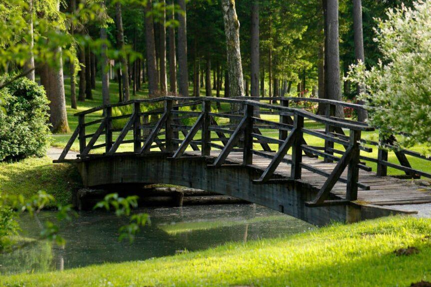 Парк замка Брдо