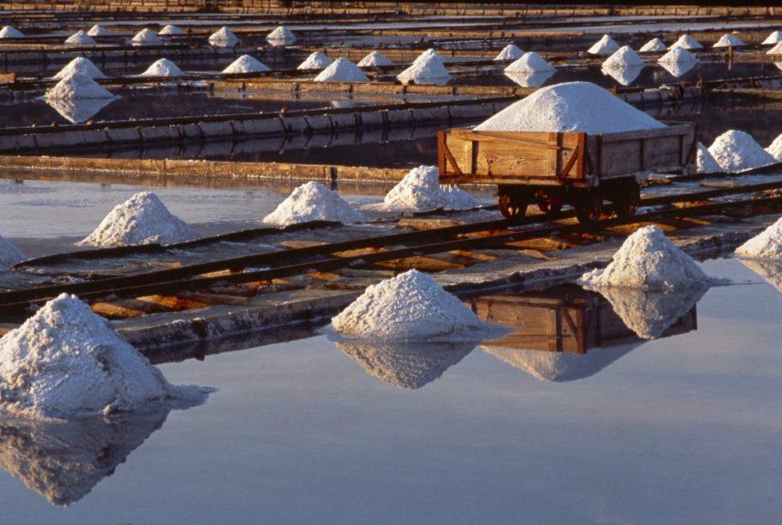 Сечовельские солины, соляные плантации в Словении