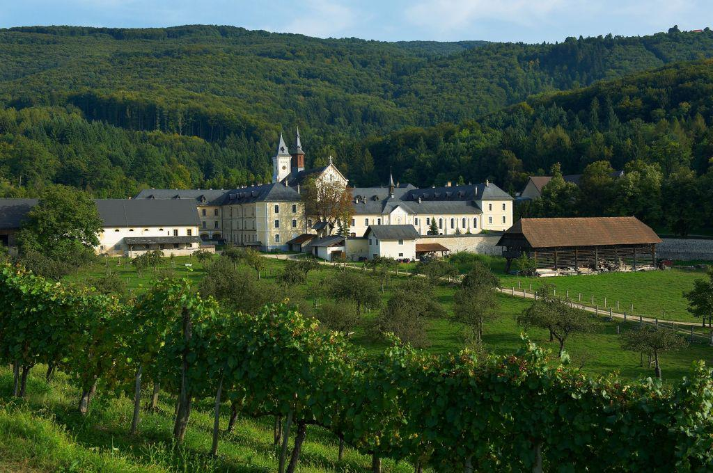 Картезианский монастырь Плетерье