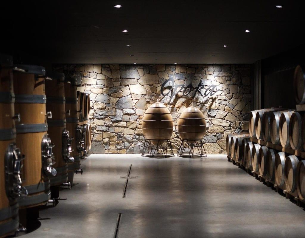 Словенское вино лучшее в мире