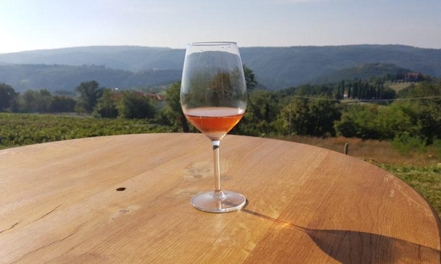 Бокал вина Родица