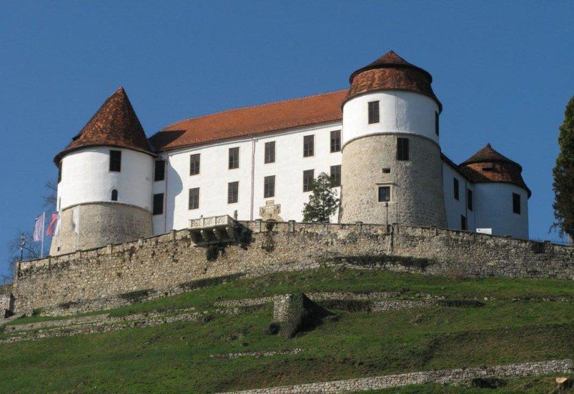Замок Севница в Штаерском Посавье