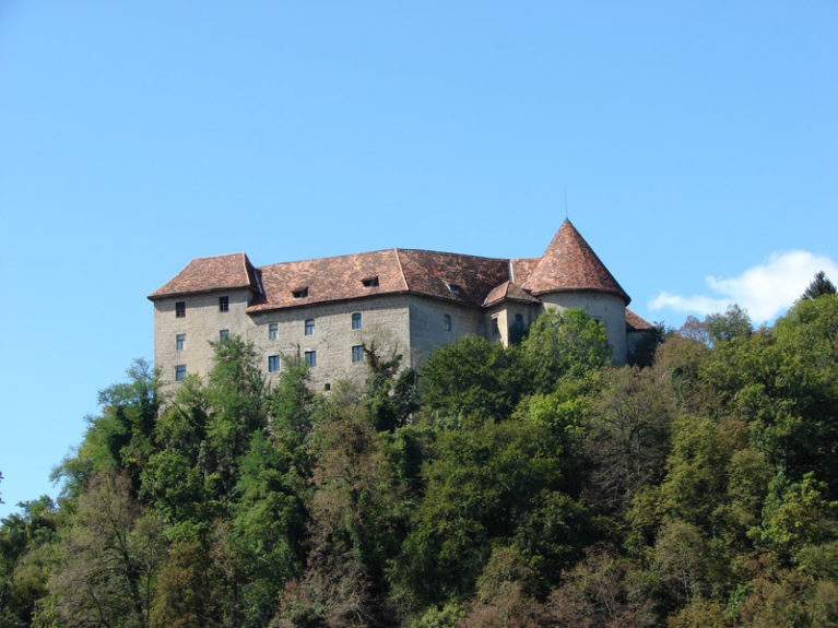 Замок Райхенбург
