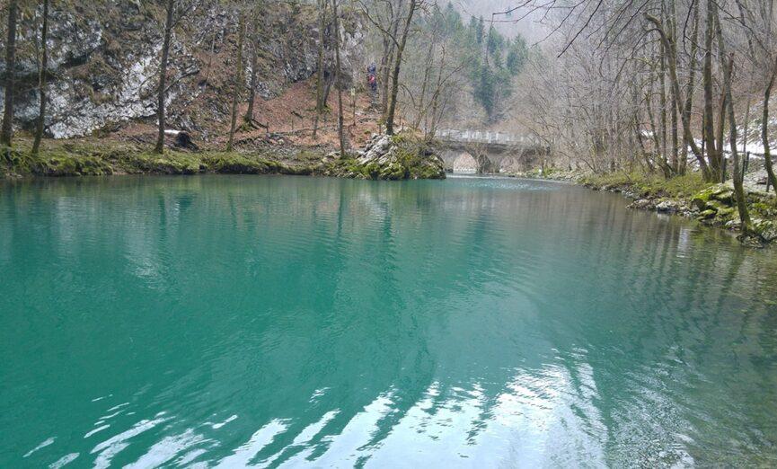 Дикое озеро весной