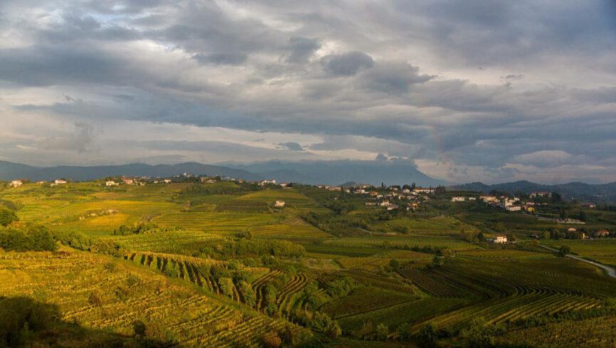 Словенская Тоскана