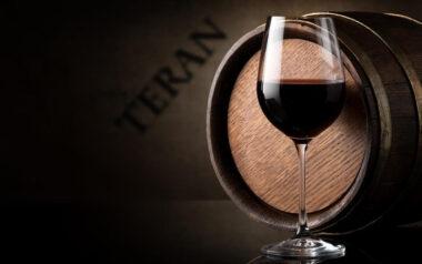 Дегустация вина Теран