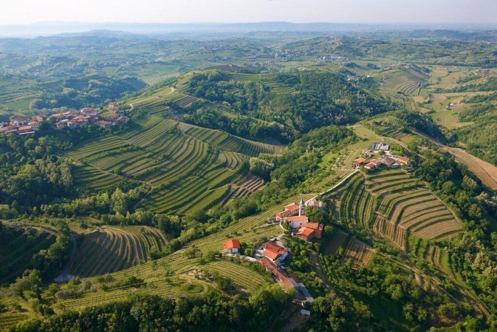 Виноградные холмы Горишких Брд