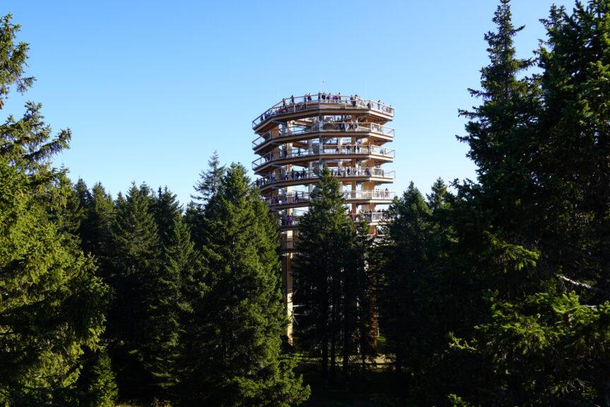 Деревянная башня на Рогле