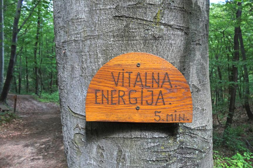 Энергия Хошнице