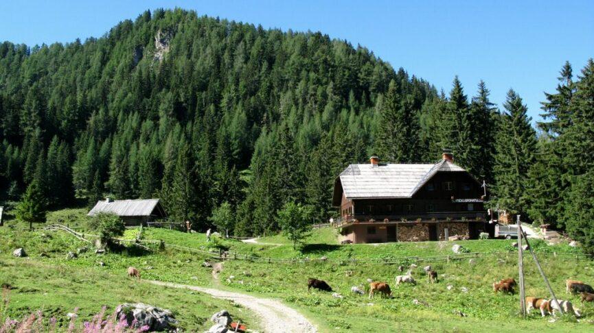 Альпийский домик на плато Грохот под горой Радуха