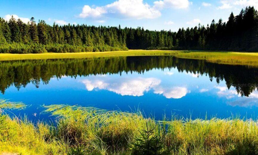 Сказочное Черное озеро