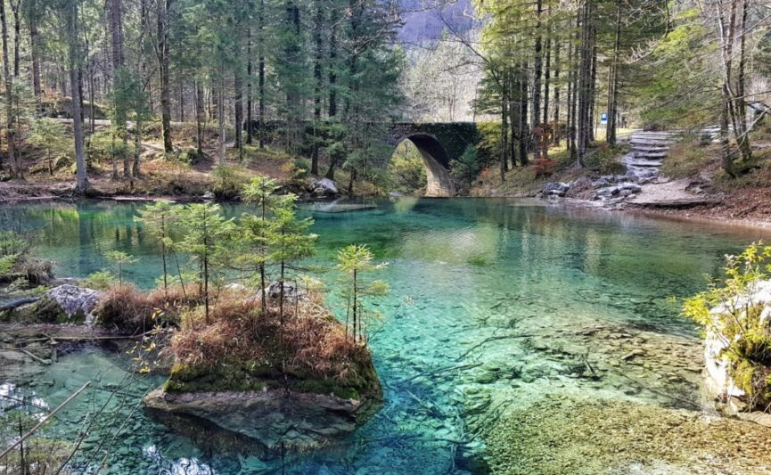 Река Камнишка Быстрица