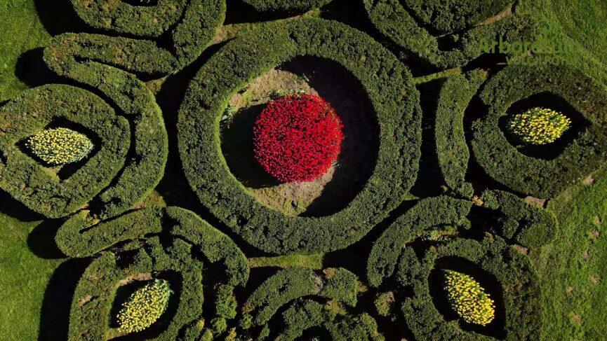 Французский сад в арборетуме Волчий Поток