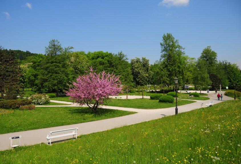 Дорожки парка Тиволи