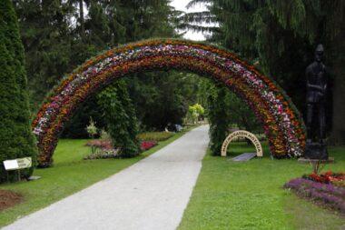 Арка цветов в парке Мозирский гай