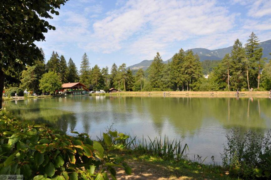 Озеро в Мозирском гае