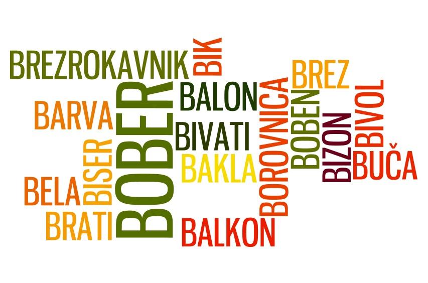 Словенские слова на Б