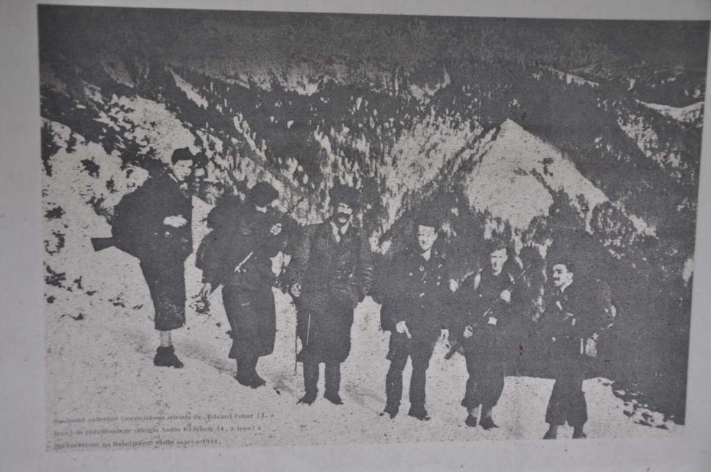 Партизаны Гореньского отряда